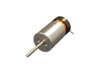 Linear Voice Coil Motor with Internal Bearing